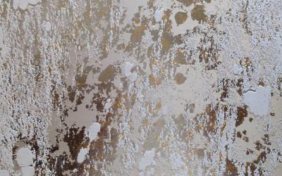 ab-grønland-forsidebillede